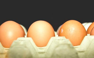 GET TO KNOW THE BENEFITS OF EATING EGGS